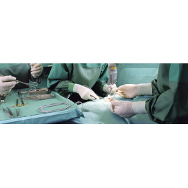détail de l'image de l'établissement Hôpital-Clinique Claude Bernard (Metz)
