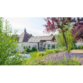 détail de l'image de l'établissement Les Jardins de Roinville